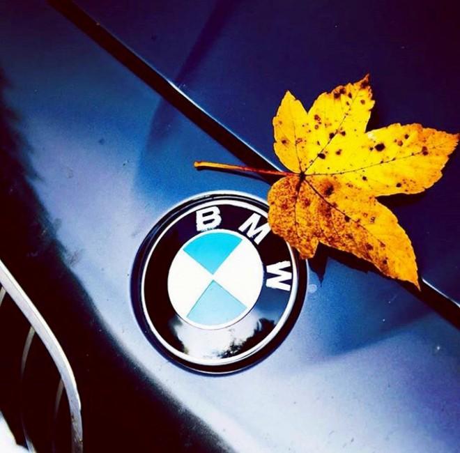 BMW ősz